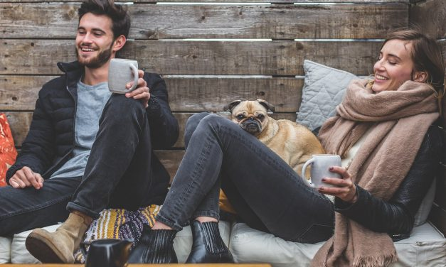 Single Vegans Get Ready To Mingle With New Veggie Friendly 'Tinder' App!
