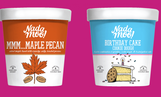 Vegan Ice Cream Brand to Be Served to The Masses Following $4M investment